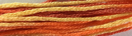Spirit of Summer 6 strand hand dyed embroidery floss 5yd skein Ship's Manor  - $2.00