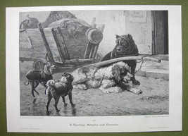 DOGS Lazy & Hard Working- VICTORIAN Era Print - $15.52