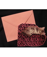 Papyrus All Occasion Pink 12  Note Cards blank Glam Cat resting Diva kit... - $19.77