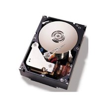 IBM 1TB 3.5-Inch Internal Hard Drive (81Y9790) - $227.40