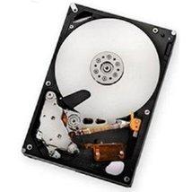 IBM 2 TB 3.5-Inch Internal Hard Drive 59Y5536 - $521.24