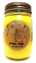 Spring Fling (Daffodil Aroma) Handmade 16oz Country Jar All Natural Soy ... - €12,35 EUR