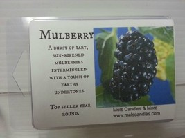 Mulberry 3.2 Ounce Wax Tarts - Scent Brick [Kitchen] - $2.99