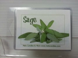 Sage- 3.2 Ounce Wax Tarts - Scent Brick, Wickless Candle [Kitchen] - €2,53 EUR