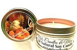 Autumn Splendor -4 Oz All Natural Soy Candle Tin [Kitchen] - $5.99