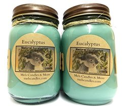 TWO - Eucalyptus -16oz Country Jar All Natural Soy Candle Great for Lung... - €22,94 EUR
