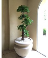 Modern Beautiful Handmade Artificial Plants and Trees, Large Luxury Japanese ... - $139.99