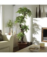 Premium Quality Japanese Artificial Plants and Trees, Large Luxury Japanese F... - $139.99