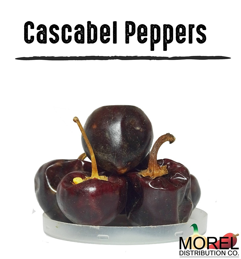 Cascabel chili