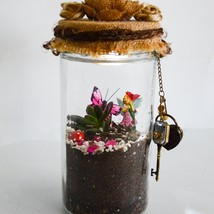 DIY Terrarium Kit with Miniature Succulents in a Hanging Mason Jar - $50.00