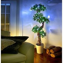 Modern Artificial Plants and Trees, Premium Quality Faux Japanese Fruticosa T... - $138.59