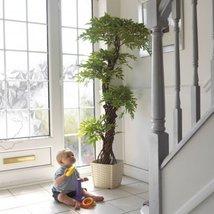 Stylish Artificial Plants and Trees, Premium Quality Japanese Fruticosa Tree,... - $138.59