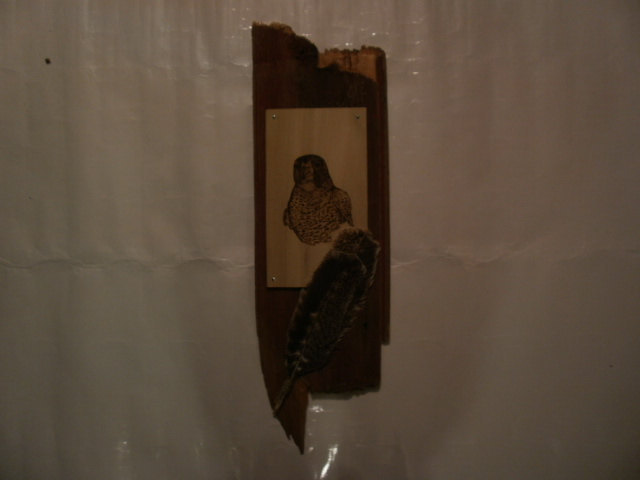 Handcrafted Beautiful Wood Burnt POPLAR HAWK PLAQUE w/ Red Barnwood Mount Natura