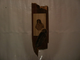 Handcrafted Beautiful Wood Burnt POPLAR HAWK PLAQUE w/ Red Barnwood Moun... - $74.99