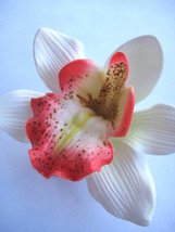 Hawaii Bridal Wedding Party Orchid Flower Hair Clip ~WHITE CORAL PINK (Q... - €8,85 EUR