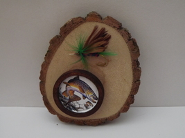 Brown Trout Display With Fly - $8.00