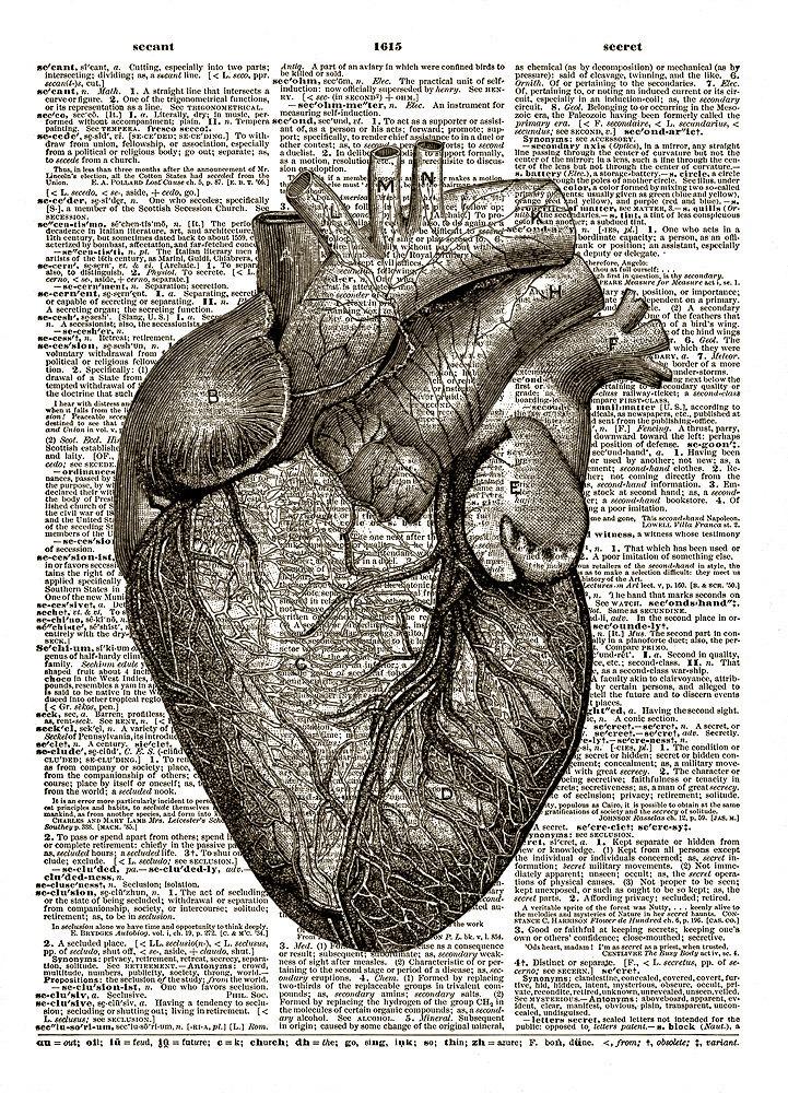 Human Heart Anatomical Black and White Dictionary Art Print No. 0027