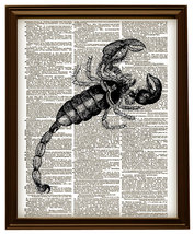 SCORPION Insect Vintage Dictionary Page Art Pri... - $12.00