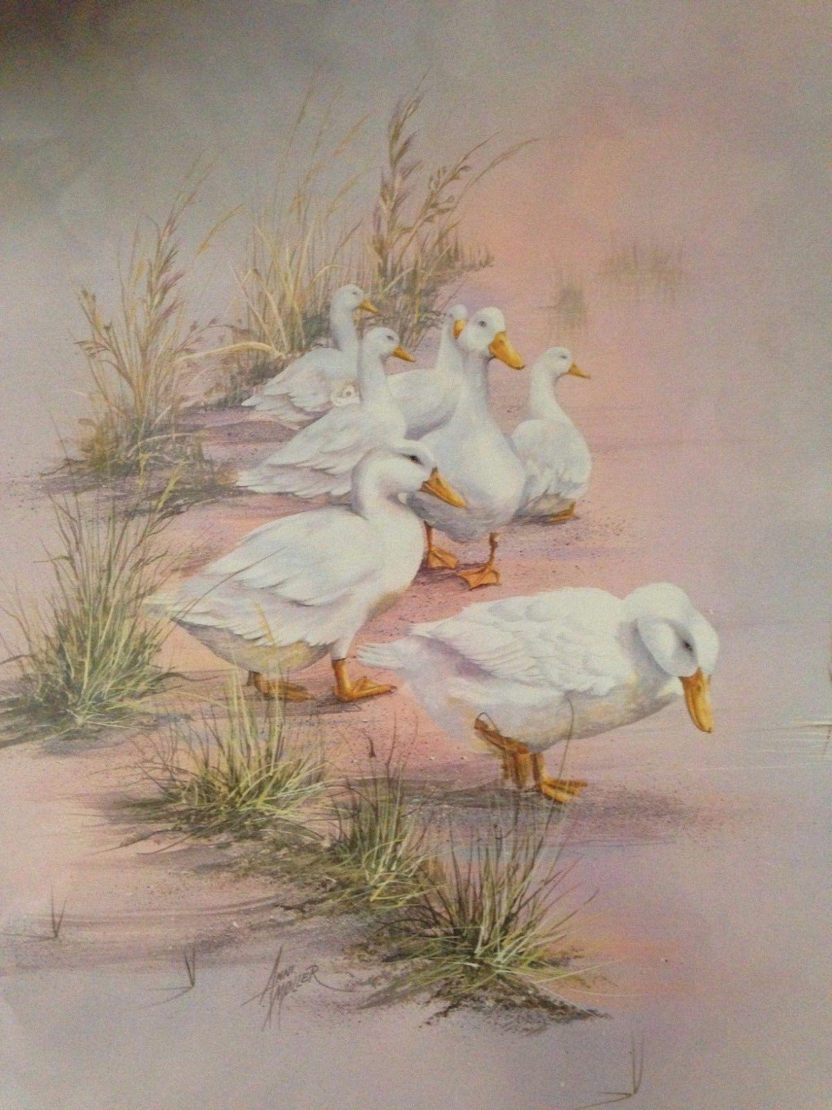 Duck Family By Ann Moller