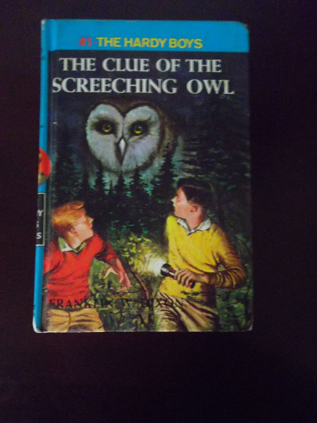 Hardy boys owl linda 001
