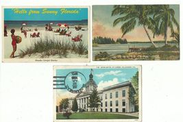 Postcard Mixed Lot Florida Beach Capitol and Palm Tree Coconut Color 193... - $5.99