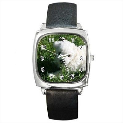 Bolognese Dog Square Round & Square Leather Strap Watch