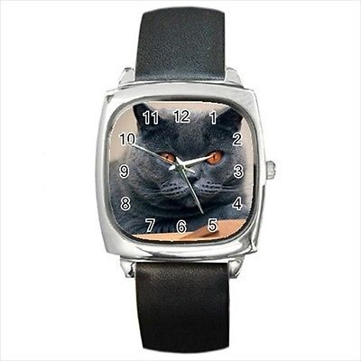 Chartreux Square Round & Square Leather Strap Watch - Cat Kitten