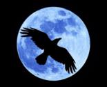 Crow moon thumb155 crop