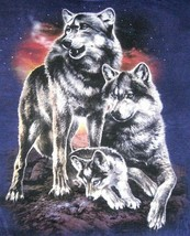 THE MOUNTAIN T Shirt M men wolf pack wolf cub family Southwest cotton wo... - $29.69