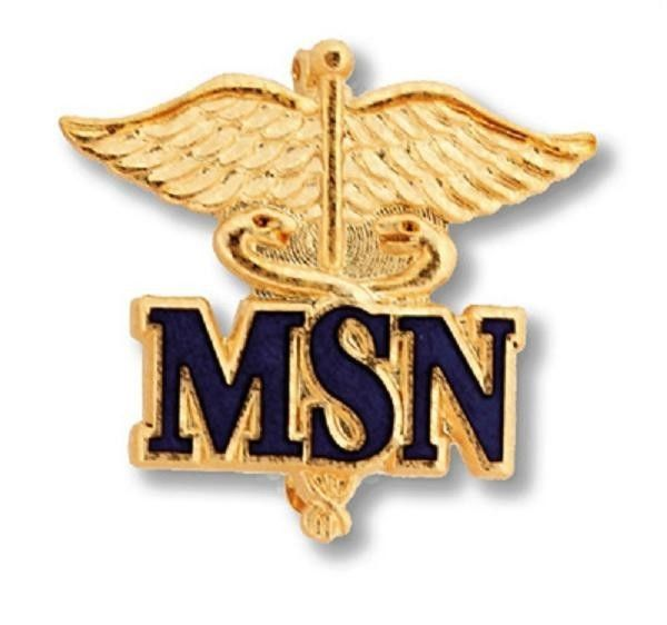 Primary image for MSN Master of Science Nurse Pin Gold Caduceus Medical Emblem Insignia Pins New