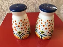 Salt and Pepper Shaker Set Ceramic Floral Multi Color Kitchen Summer Tro... - $15.99
