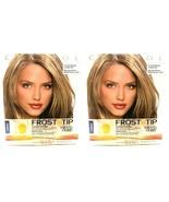 2 Clairol Frost & Tip Hair Highlighter Cap Hook Nice 'n Easy Dark Blonde... - $21.75