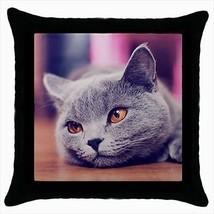 Korat Throw Pillow Case - Cat Kitten - $16.44