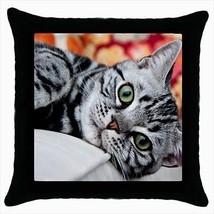American Shorthair Throw Pillow Case - Cat Kitten - $16.44