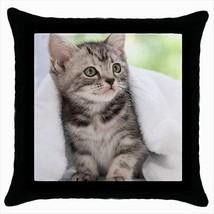 American Wirehair Throw Pillow Case - Cat Kitten - $16.44