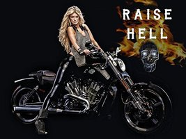 Motorcycle Poster Harley Davidson Poster Biker Gifts Biker Babe 18x24 - $19.99