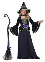 California Costumes Class Witch Girl Kid Child Halloween Costume Party 0... - $26.19