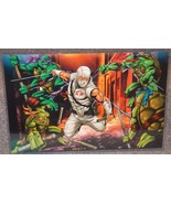 TMNT vs GI Joe Storm Shadow Glossy Print 11 x 17 In Hard Plastic Sleeve - $24.99