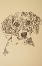 Beagle Dog Art Print #47 Signed Kline Portrait. Dogs name added free. GR... - $49.95