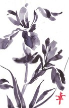 Akimova: IRISES black&white, flower , ink, chineese brush - $9.00