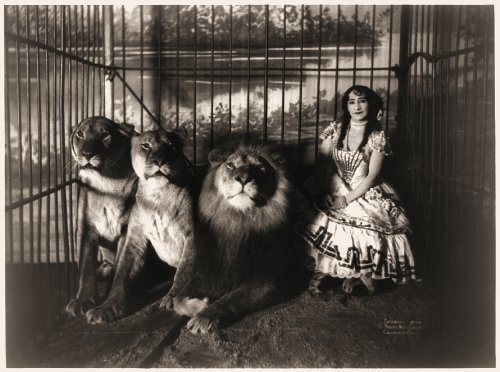 Primary image for Vintage Reproduction Print Circus Adjee and The Lions 1899