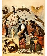 Vintage Reproduction Print Circus Trained Dog Act 1899 - £12.44 GBP