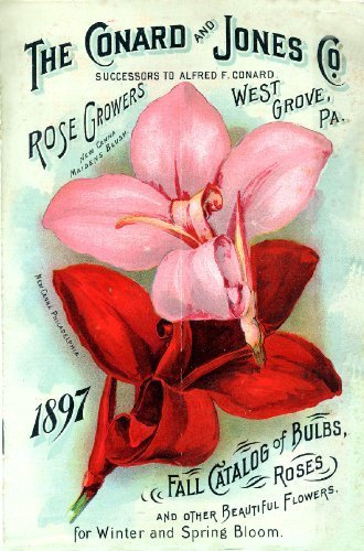 Primary image for Vintage Seed Co. Reproduction Print 11 x 17 Conrad & Jones Co. #4