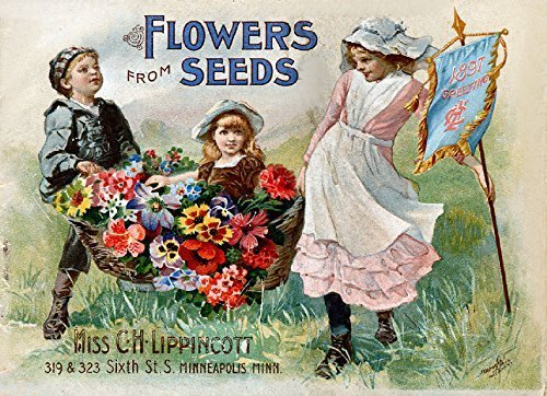 Primary image for Vintage Seed Co. Reproduction Print 11 x 17 Lipponcott #2