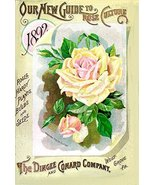 Vintage Seed Co. Reproduction Print 11 x 17 Dingee Co. - $27.79