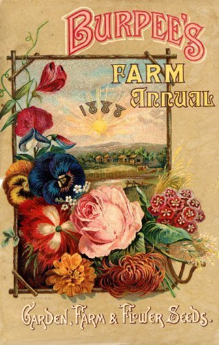 Primary image for Vintage Seed Co. Reproduction Print 11 x 17 Burpees 4