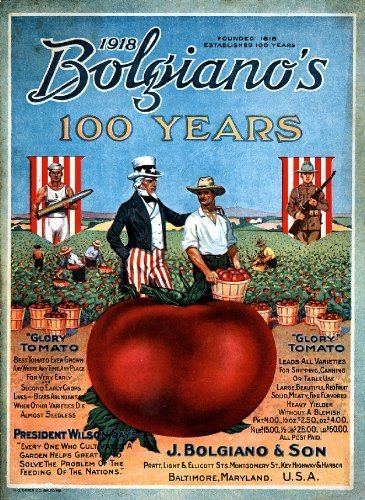 Primary image for Vintage Seed Co. Reproduction Print 11 x 17 Bolgianos
