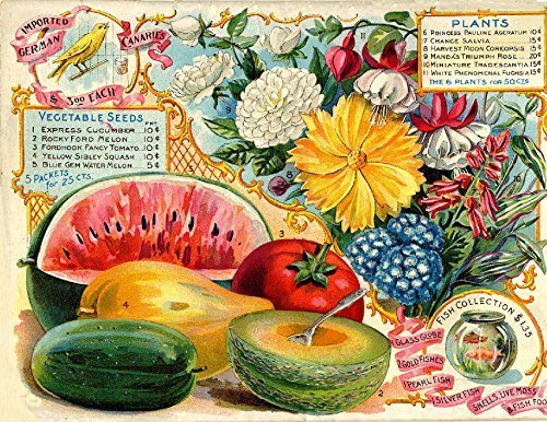 Primary image for Vintage Seed Co. Reproduction Print 11 x 17 Iowa Seed Co. #3