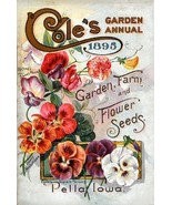 Vintage Seed Co. Reproduction Print 11 x 17 Cole's #5 - $27.79