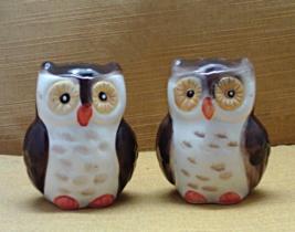 Ceramic Owl Salt & Pepper Shaker Set // Whimsical // Novelty S&P Shakers - $8.50
